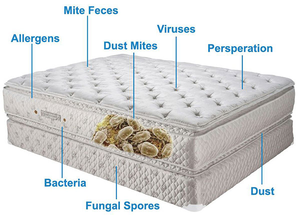 Mattress Cleaning Niagara