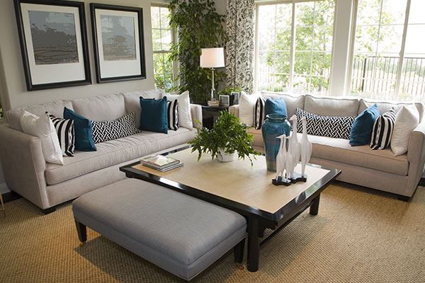 Furniture Cleaning Niagara